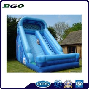 Water Park Blue PVC Inflatable Water Slide pictures & photos