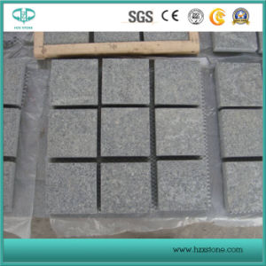 G603/G654/G682 White/Grey/Black/Yellow Granite/Basalt/Limestone Flooring/Wall Cladding/Stairs/Steps/Pool Coping Stone Tile Paving pictures & photos