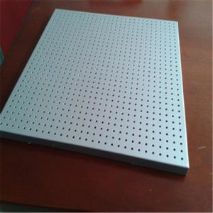 High Strength Honeycomb Panels for Rail Transit (HR348) pictures & photos