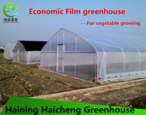 Customized Film Garden Greenhouse for Farmer pictures & photos