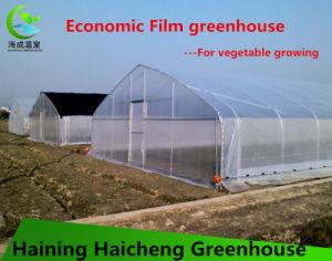 Customized Film Garden Greenhouse pictures & photos