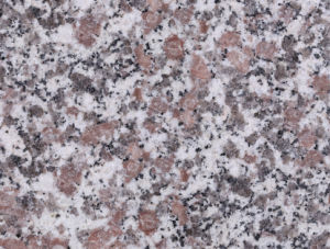 Oppein Granite Stone Wholesale Slabs Countertop for Kitchen and Bathroom pictures & photos