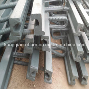 Expansion Joint Used for Bridge Deck pictures & photos