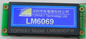 216X64 Graphic LCD Module Cog Type LCD Display (LM6069D) for Audio Player 1u Case pictures & photos