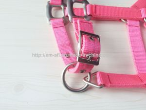Horse Webbing Halters for Sale pictures & photos