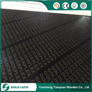 9-18m Marine Construction Material Shuttering Film Faced Plywood pictures & photos