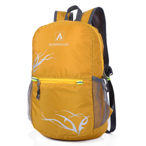 Fashionable Cheap Eco-Friendly Traveling Nylon Cheap Foldable Backpacks pictures & photos