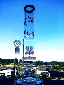 Hb King New Design Button Birdcage Perc Glass Pipe with Wholesale Price pictures & photos