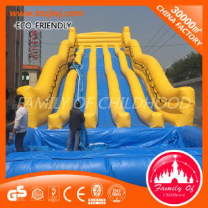 CE Approved Cheap Kids Game Dinosaur Water Bouncy Castle pictures & photos