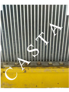 Bulldozer Parts Assy 16y-03A-03000 High Quality Than Original Radiator pictures & photos