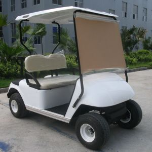 Battery Powered One Person Single Seat Golf Buggy (DG-C1) pictures & photos