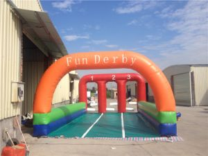 2016 New Design Commercial Inflatable Race Horse Game for Sale pictures & photos