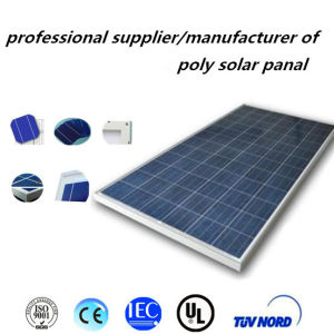 280W Poly Solar Panel with 25 Years Service Life pictures & photos