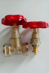 Brass Gate Valve/ Brass Stop Valve (a. 7016) pictures & photos