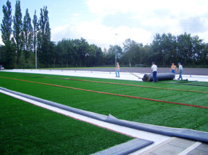 Cheap Guangzhou Artificial Grass for Soccer (Y60) pictures & photos