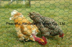 Chicken Wire (L010) pictures & photos