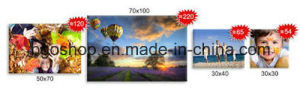 """Solvent Ink Materials Polyester Canvas Advertising Material (24""""X36"""" 3.8cm) pictures & photos"""