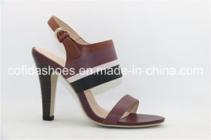 Elegant Heel Open Toe Lady Sandal with Simple Design pictures & photos