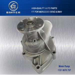 Guangzhou Market Wholesale Pump Water Supply for BMW pictures & photos