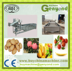 Vegetable Washing Machine (ss 304 material) pictures & photos