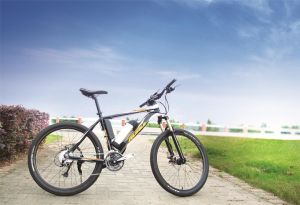 26 Inch Electric Aluminum Alloy City Bicycle, Steel Bicycle pictures & photos