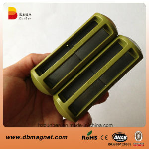 Cage Animal Veterinary Ferrite Permanent Magnets pictures & photos