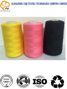 120d/2 5000m Polyester Embroidery Thread pictures & photos