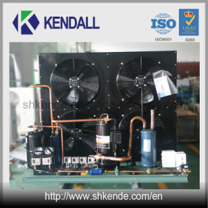 Air Cooled Condensing Unit with Copeland Hermetical Scroll Compressor pictures & photos