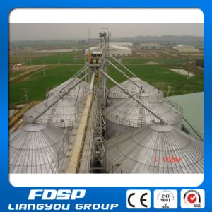 Farm Used Storage Silo/Agricultural Industrial Steel Silo Manufacturer pictures & photos