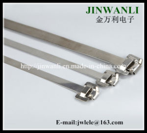 10*300mm Releasable Naked Stainless Steel Cable Ties with Seal pictures & photos