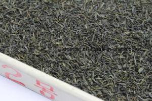 Good Price Green Tea pictures & photos