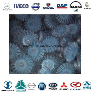 Froging Bevel Gear Differential Parts Side Drive Gear Axle Shaft pictures & photos