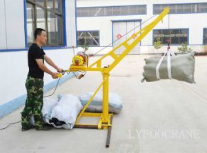Upgrade Construction Mini Crane with Ce Certificated pictures & photos