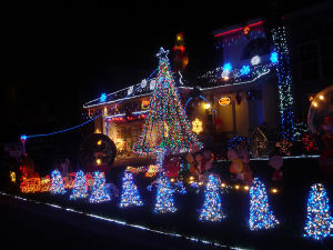 LED Christmas Decoration Light Hotel Street Light pictures & photos