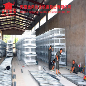 Henan Jinfeng Design Poultry Farming Equipment Egg Chicken Cage pictures & photos