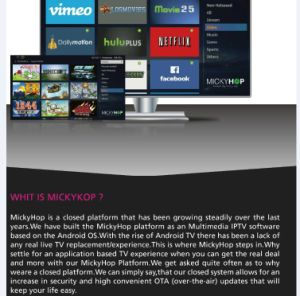Android TV Box Supported 3D Movie Mickyhop Market pictures & photos