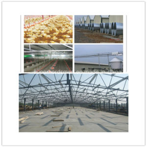 Prefabricated Steel Structure Design Chicken House pictures & photos