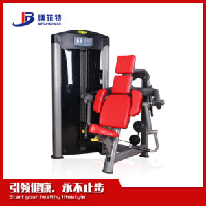Second Hand Import Gym Equipment Names Strength Abdominal Machine pictures & photos