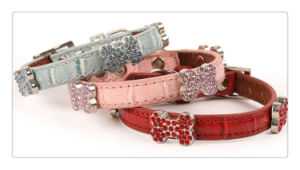 Luxury High Quality Hot Selling Genuine Leather Dog/Pet Collars pictures & photos