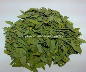 Manufacturer Supply Sennoside Natural Senna Leaf Extract pictures & photos