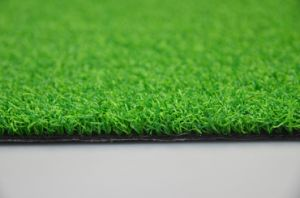 Eco-Friendly Synthetic Grass Putting Grass (GFN) pictures & photos