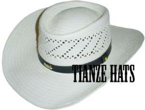 8 Bu Paper Cowboy Hat pictures & photos