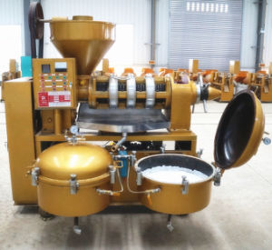 Oil Press Machine /380V Screw Oil Press Full Oil Machine pictures & photos