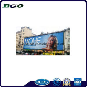 PVC Exhibition Display Frontlit Flex Banner Canvas Printing (1000dx1000d 9X9 510g) pictures & photos