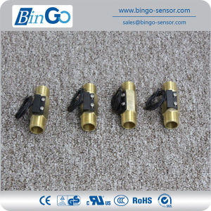 Good Quality Piston Flow Switch Fs-M-Psb02-Gd pictures & photos