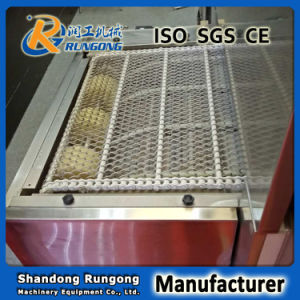 Manufacturer Flat Wire Belt/ Conventional Mesh Belt pictures & photos