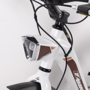 Hot Sale Female Lithium Electric Bike 36V 250W with Throttle pictures & photos