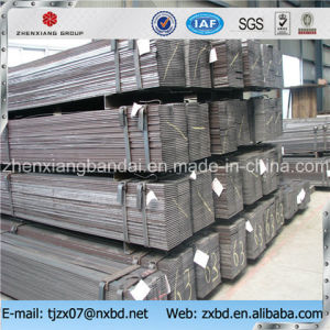Platina Flat Bars From China Supplier pictures & photos