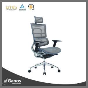 Jns 5 Years Warranty Luxury Ergonomic Mesh Office Chair pictures & photos
