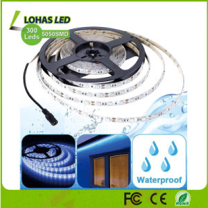 IP65 Waterproof SMD 5050 60 LEDs/Meter 5m/Roll Flexible RGBW LED Strip Light with Remote Controller pictures & photos